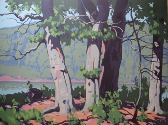 Beech Woods   Fred Haines