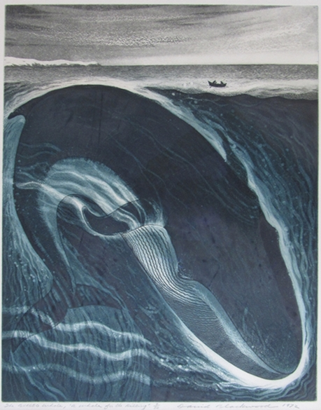 The Burgeo Whale | David Blackwood