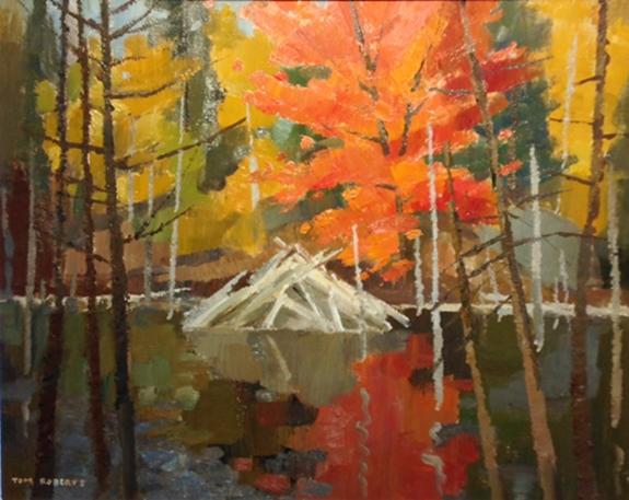 Algonquin Beaver Pond | Tom Roberts