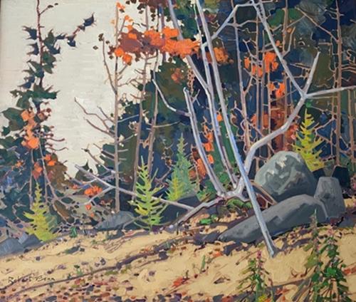 Pattern, Autumn   Robert Genn