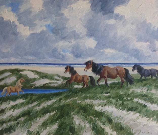 Ponies of Sable Island   Douglas Lawley